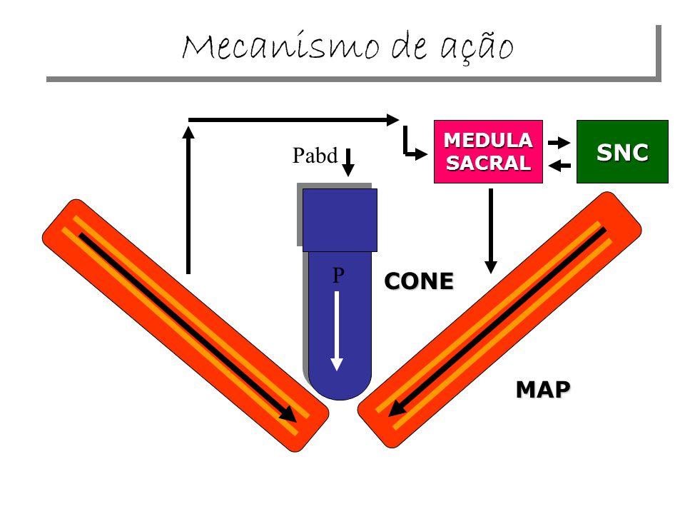 Mecanismo de ação MEDULA SACRAL SNC Pabd P CONE MAP