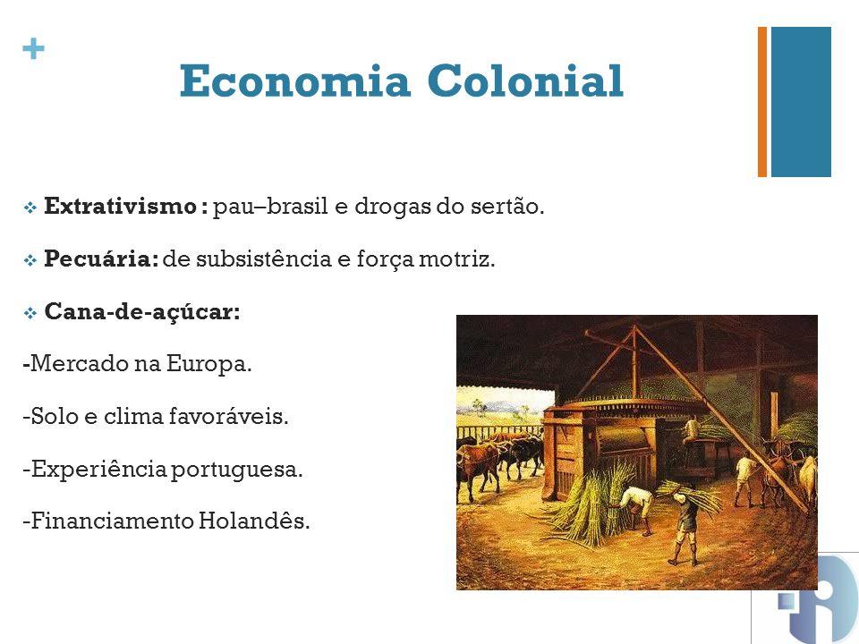 Economia Colonial Extrativismo : pau–brasil e drogas do sertão.