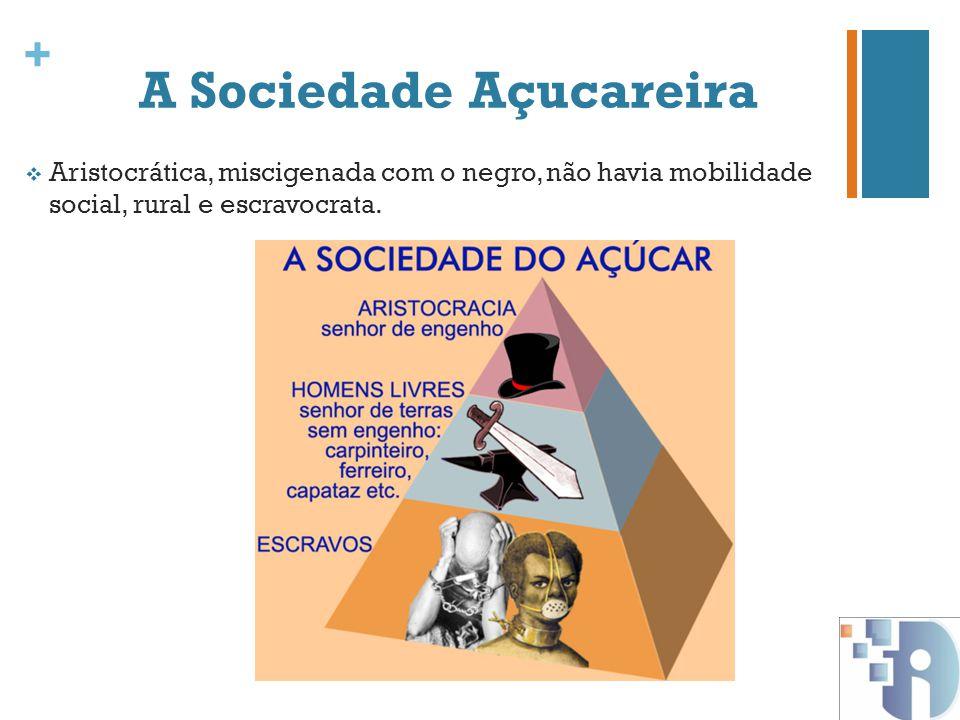 A Sociedade Açucareira