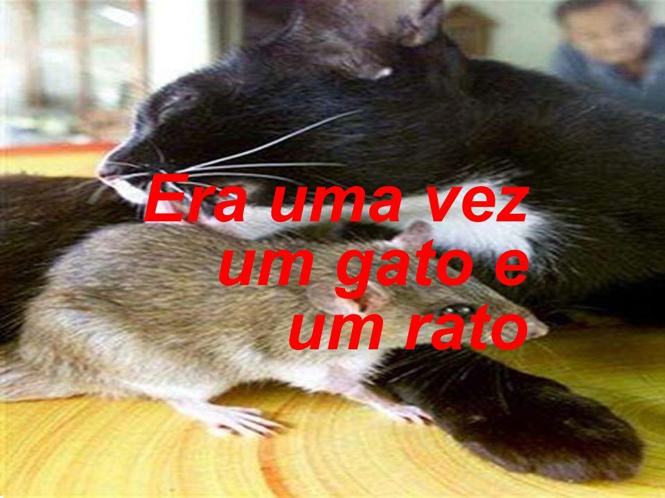 Era uma vez um gato e um rato