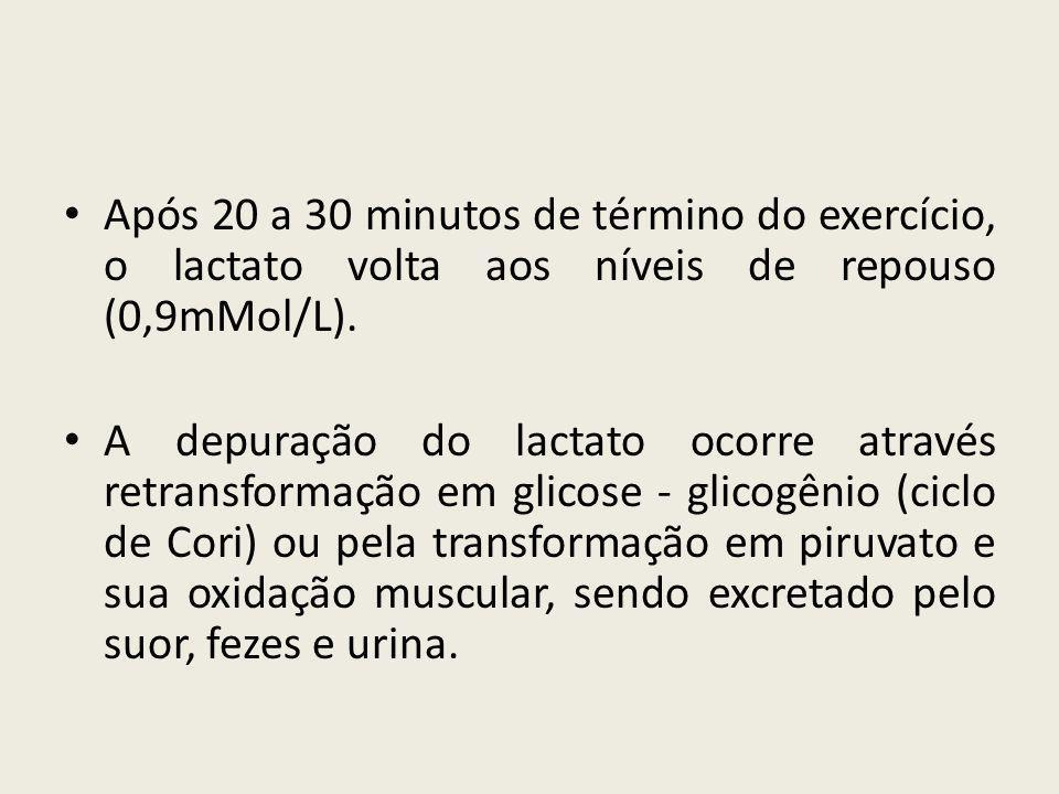 Após 20 a 30 minutos de término do exercício, o lactato volta aos níveis de repouso (0,9mMol/L).