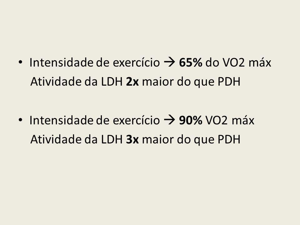 Intensidade de exercício  65% do VO2 máx