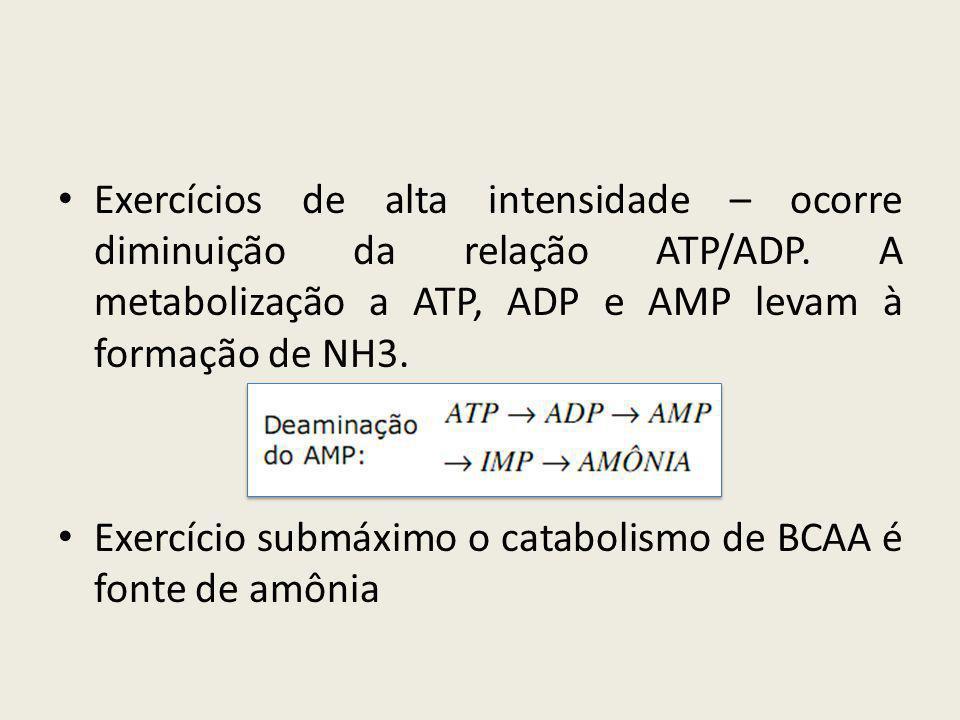 Exercícios de alta intensidade – ocorre diminuição da relação ATP/ADP