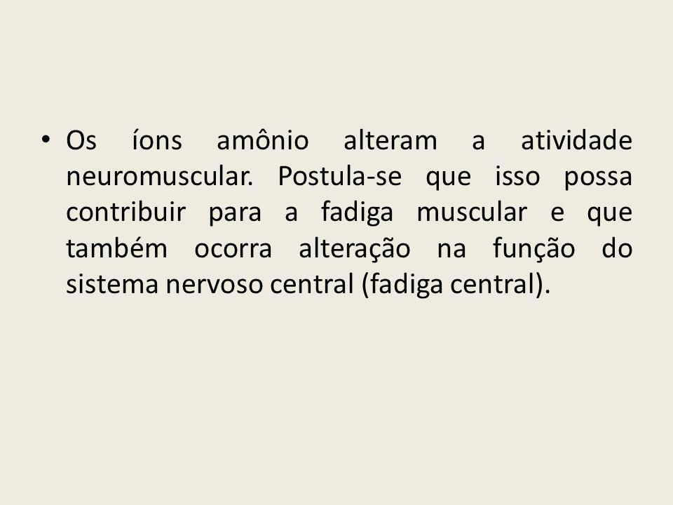 Os íons amônio alteram a atividade neuromuscular