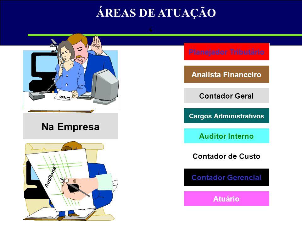 Planejador Tributário Cargos Administrativos