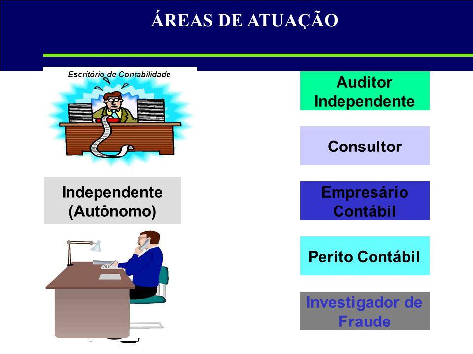 Independente (Autônomo) Investigador de Fraude