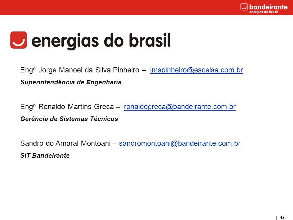 Engo. Jorge Manoel da Silva Pinheiro – jmspinheiro@escelsa.com.br