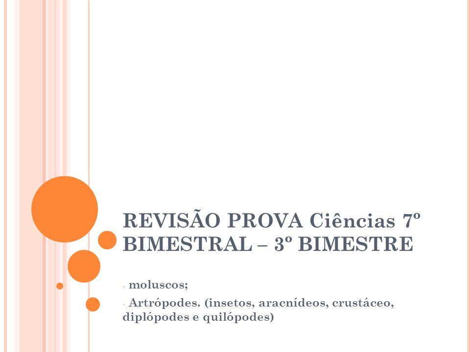 REVISÃO PROVA Ciências 7º BIMESTRAL – 3º BIMESTRE