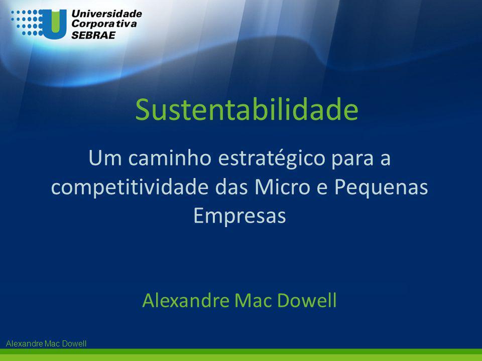 Sustentabilidade Um caminho estratégico para a competitividade das Micro e Pequenas Empresas.