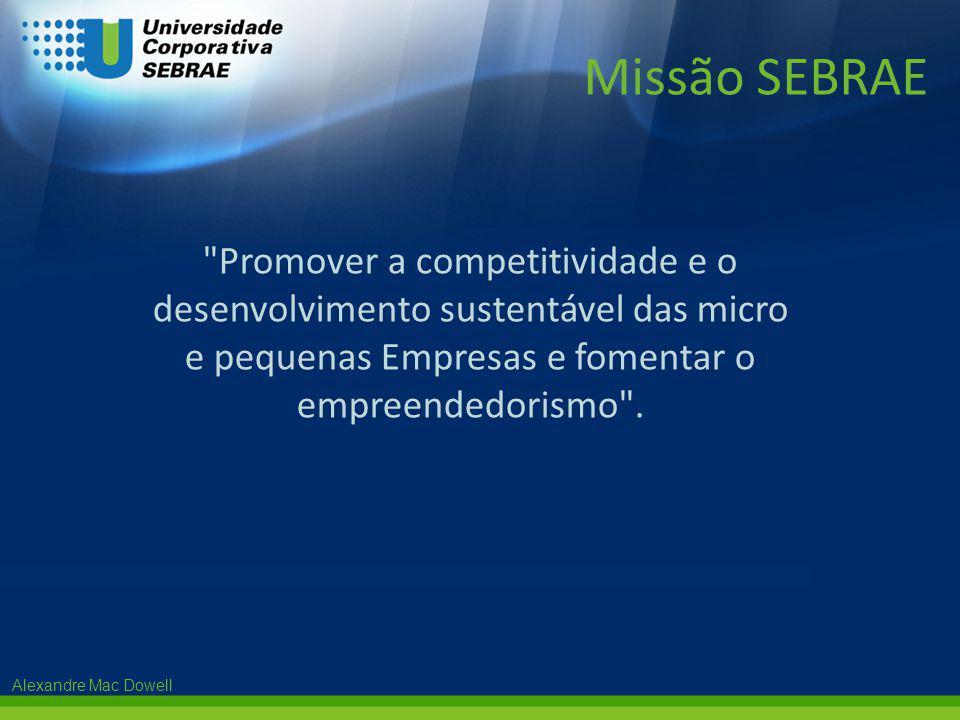 Missão SEBRAE Promover a competitividade e o desenvolvimento sustentável das micro e pequenas Empresas e fomentar o empreendedorismo .