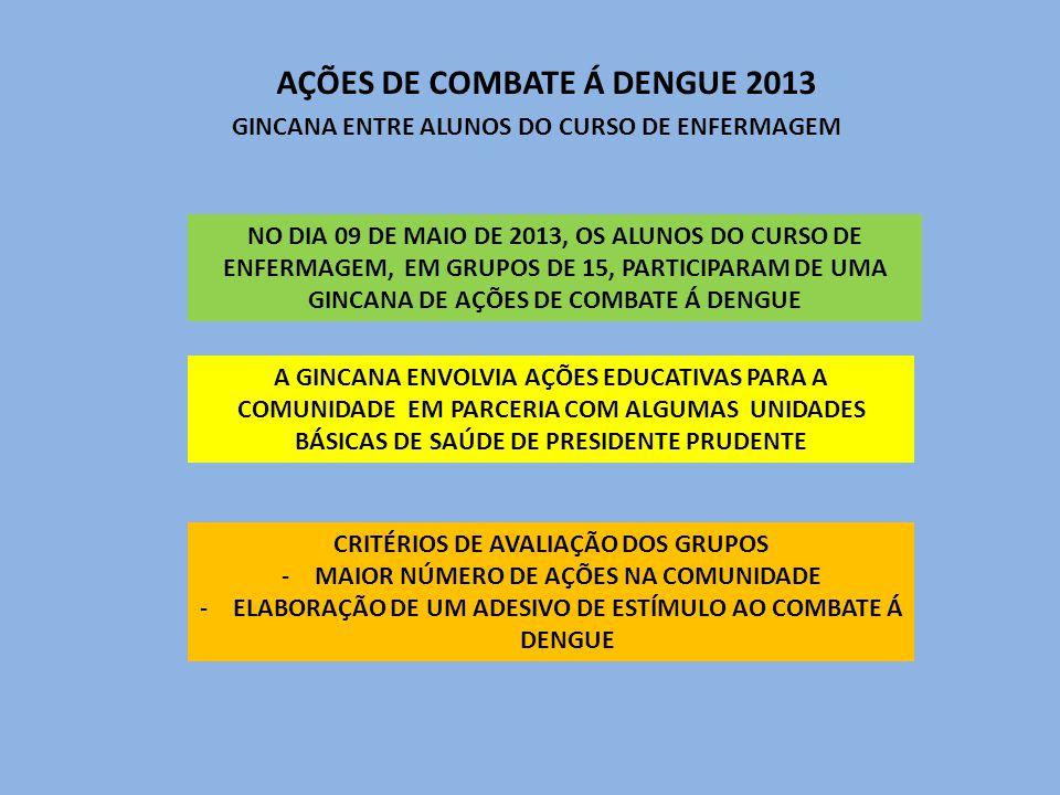 AÇÕES DE COMBATE Á DENGUE 2013