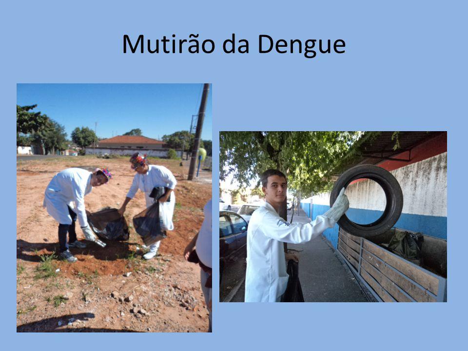 Mutirão da Dengue