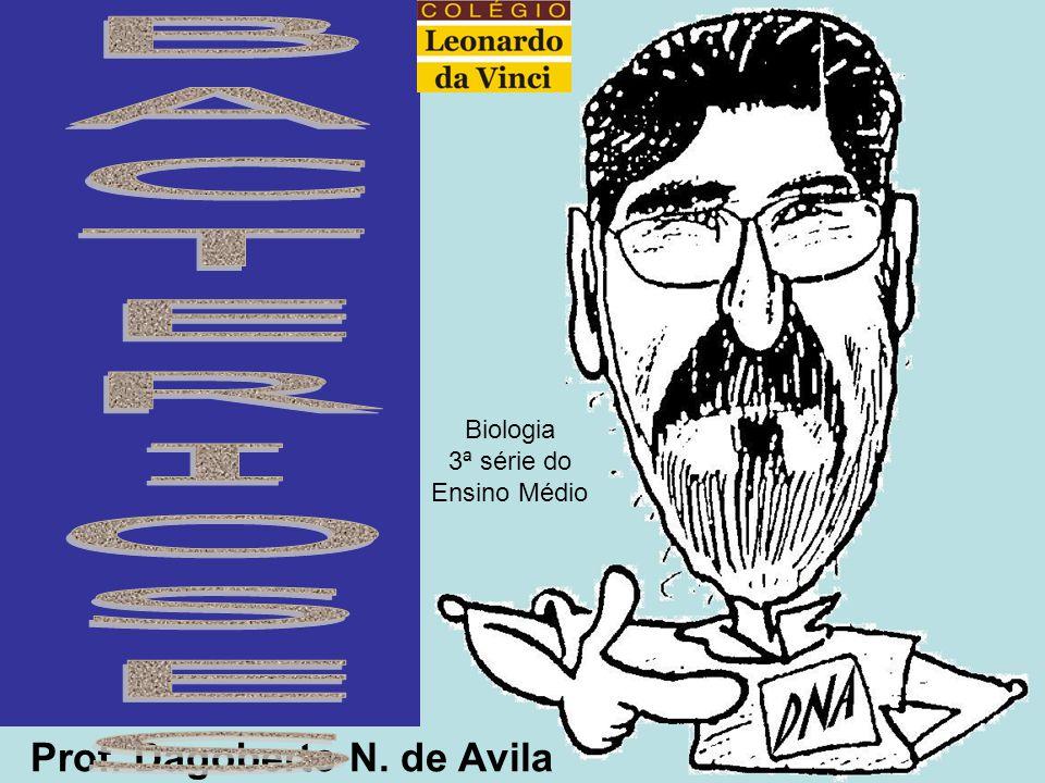 BACTERIOSES Prof. Dagoberto N. de Avila Biologia