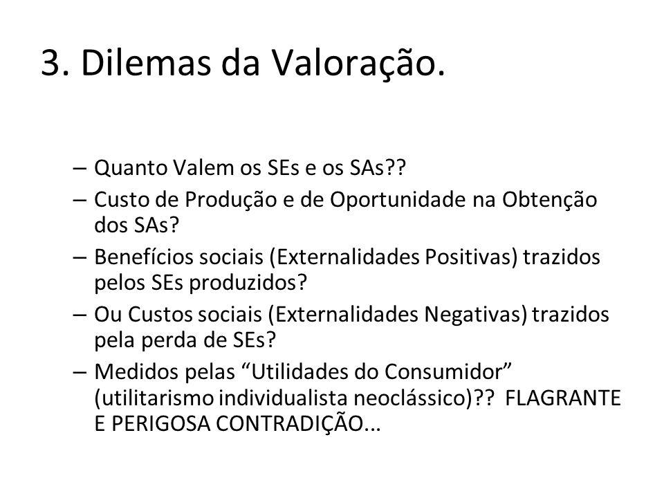 3. Dilemas da Valoração. Quanto Valem os SEs e os SAs
