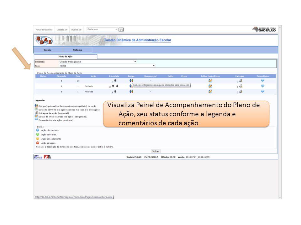 Visualiza Painel de Acompanhamento do Plano de Ação, seu status conforme a legenda e comentários de cada ação