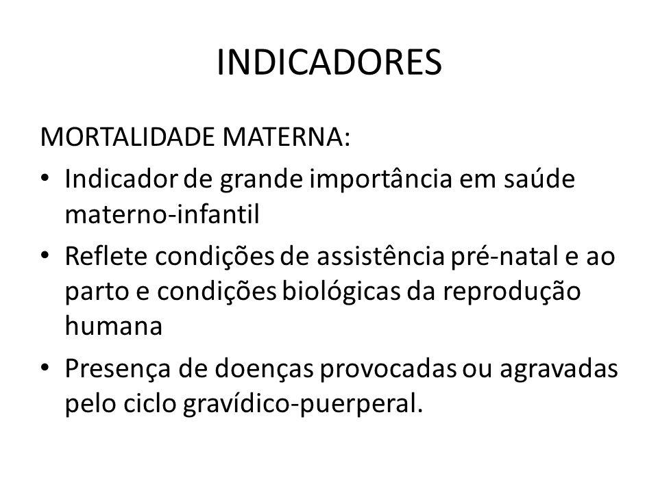 INDICADORES MORTALIDADE MATERNA: