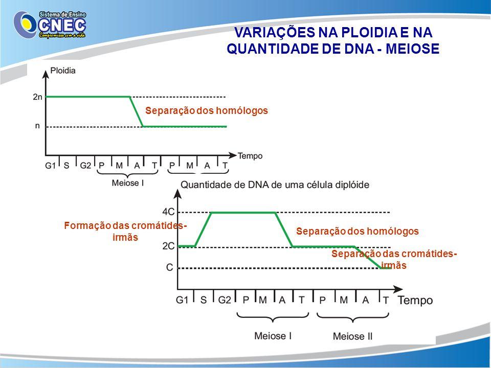 VARIAÇÕES NA PLOIDIA E NA QUANTIDADE DE DNA - MEIOSE