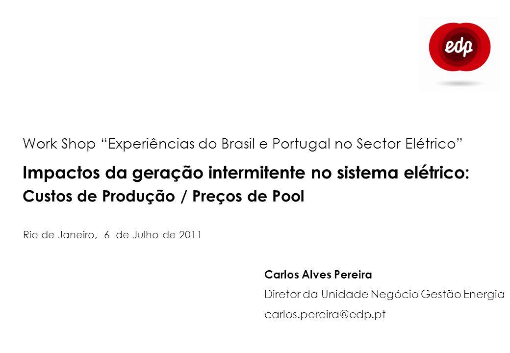Work Shop Experiências do Brasil e Portugal no Sector Elétrico