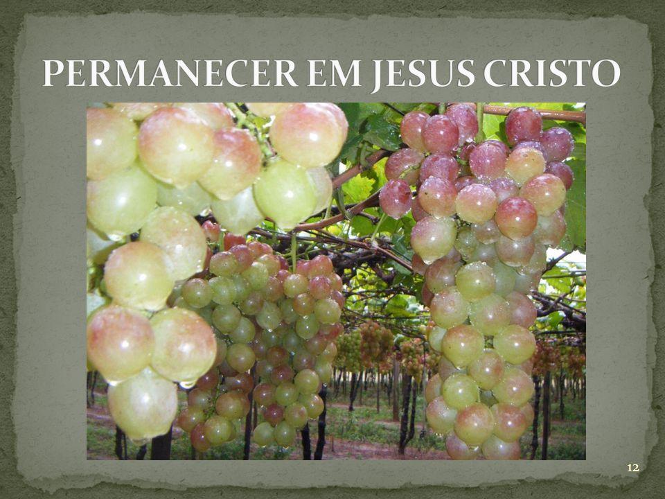 PERMANECER EM JESUS CRISTO