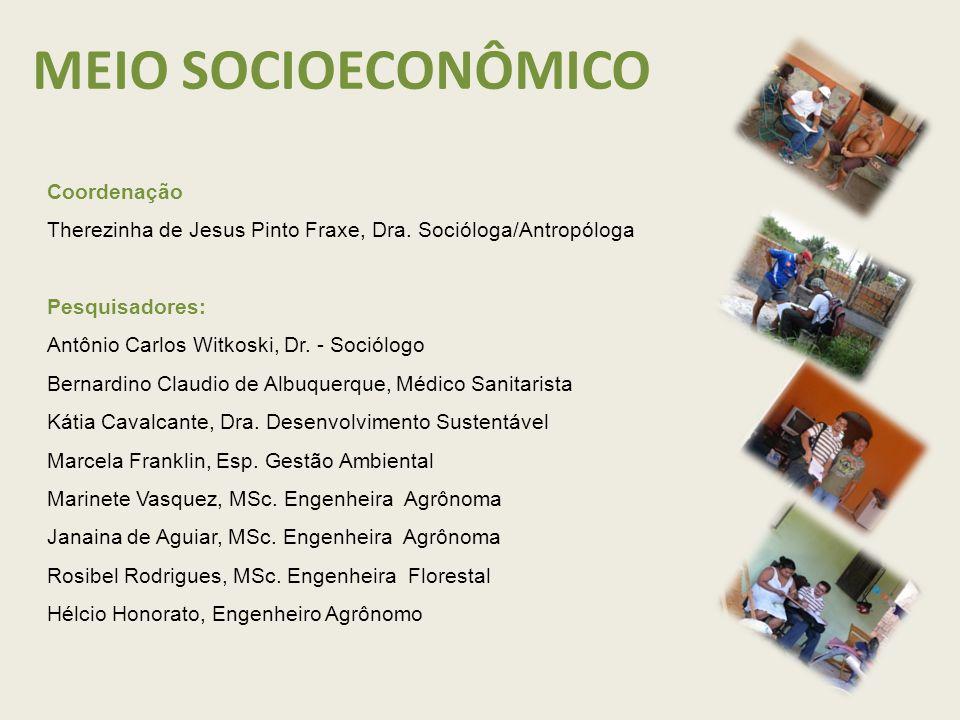 MEIO SOCIOECONÔMICO Coordenação