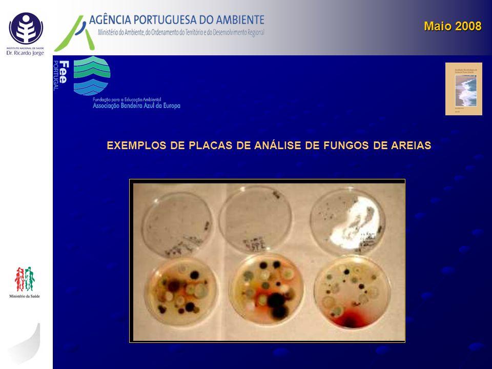 EXEMPLOS DE PLACAS DE ANÁLISE DE FUNGOS DE AREIAS