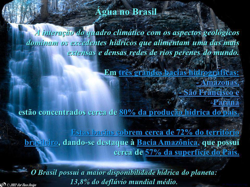 O Brasil possui a maior disponibilidade hídrica do planeta: