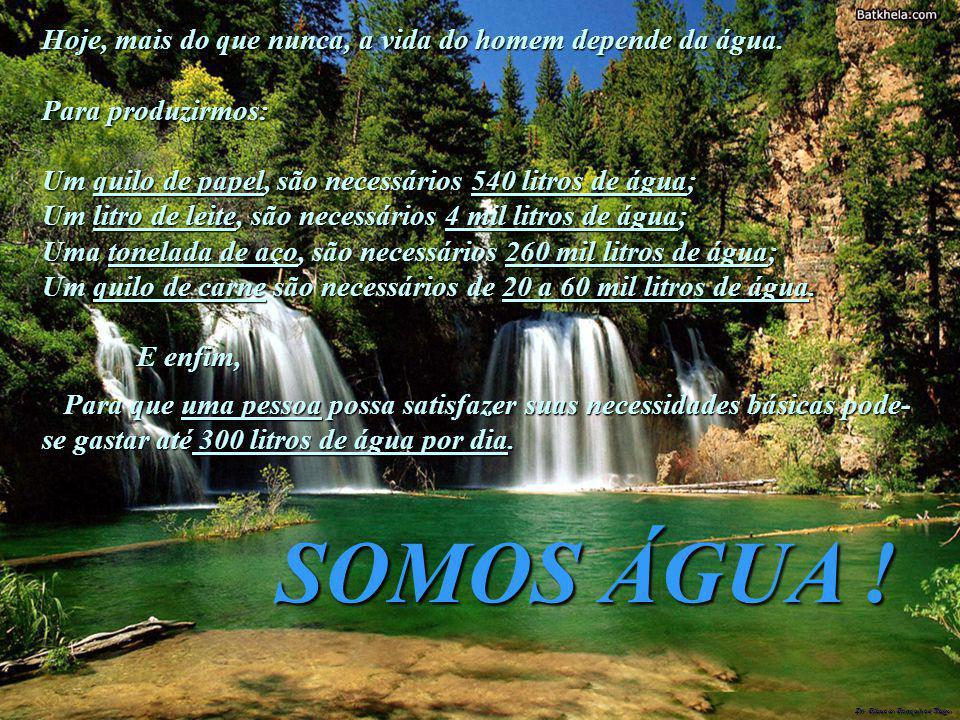 SOMOS ÁGUA ! Hoje, mais do que nunca, a vida do homem depende da água.
