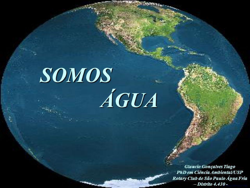 SOMOS ÁGUA Glaucio Gonçalves Tiago PhD em Ciência Ambiental/USP