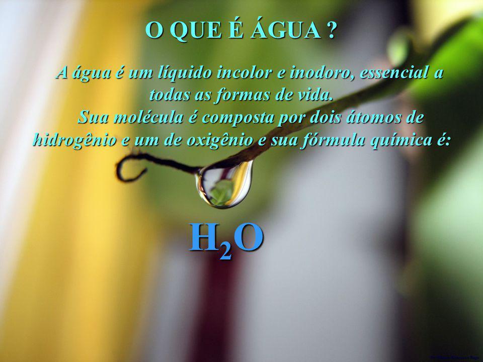 O QUE É ÁGUA A água é um líquido incolor e inodoro, essencial a todas as formas de vida.