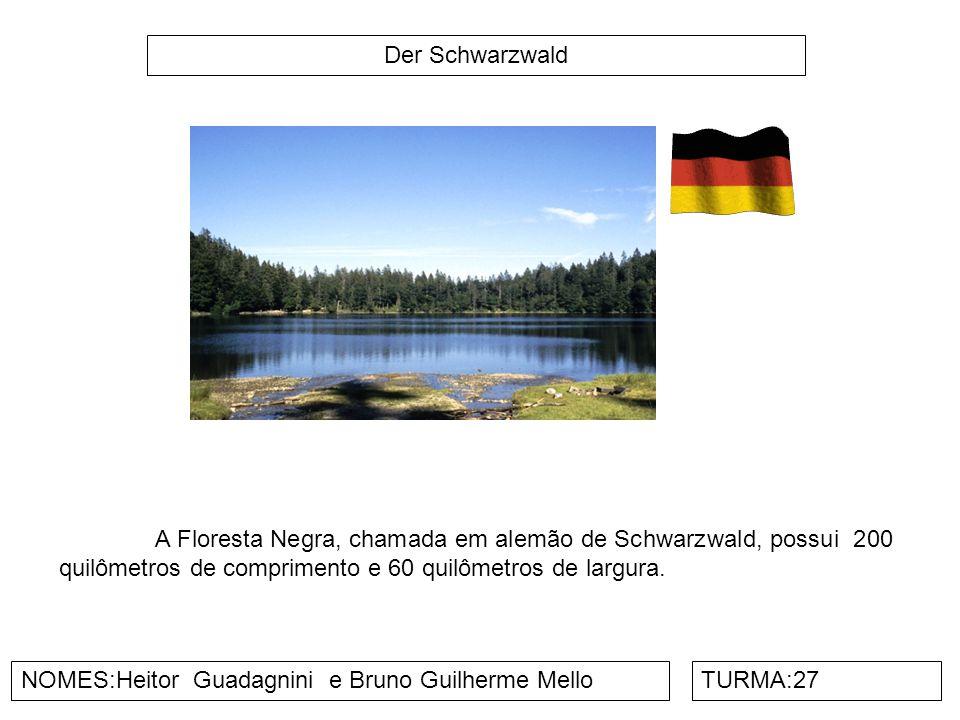 Der Schwarzwald A Floresta Negra, chamada em alemão de Schwarzwald, possui 200 quilômetros de comprimento e 60 quilômetros de largura.