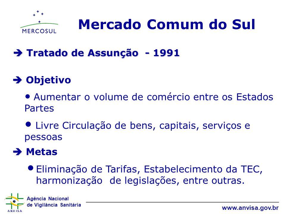 Mercado Comum do Sul  Tratado de Assunção - 1991  Objetivo