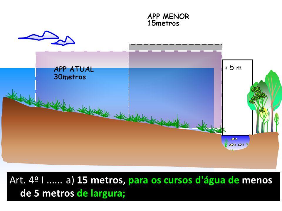 < 5 m APP MENOR. 15metros. APP ATUAL. 30metros.