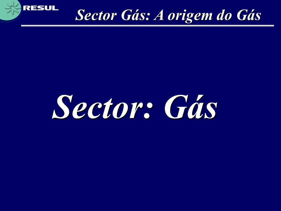 Sector Gás: A origem do Gás
