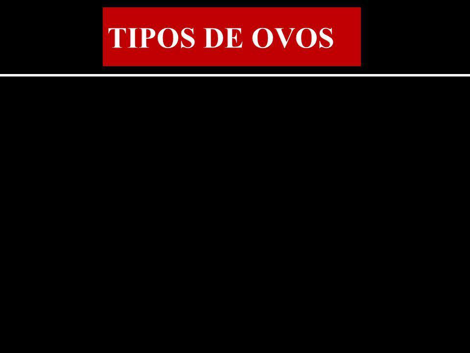 TIPOS DE OVOS
