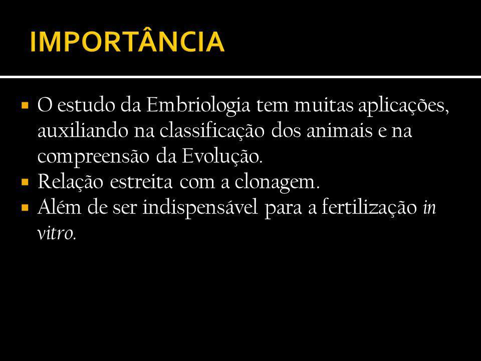 IMPORTÂNCIA O estudo da Embriologia tem muitas aplicações, auxiliando na classificação dos animais e na compreensão da Evolução.