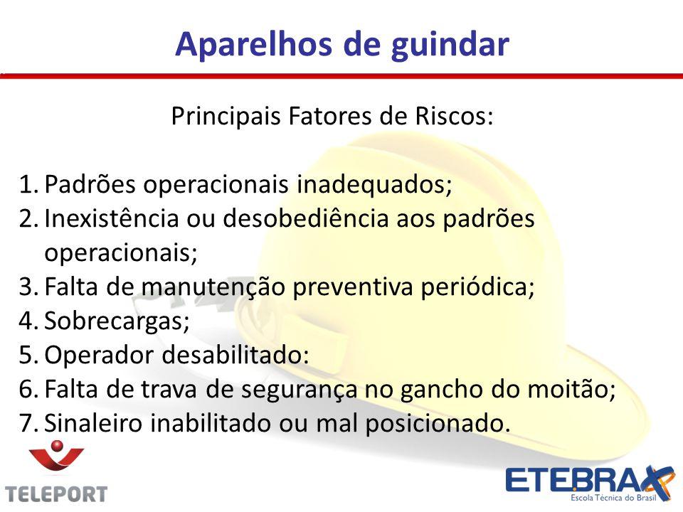 Principais Fatores de Riscos: