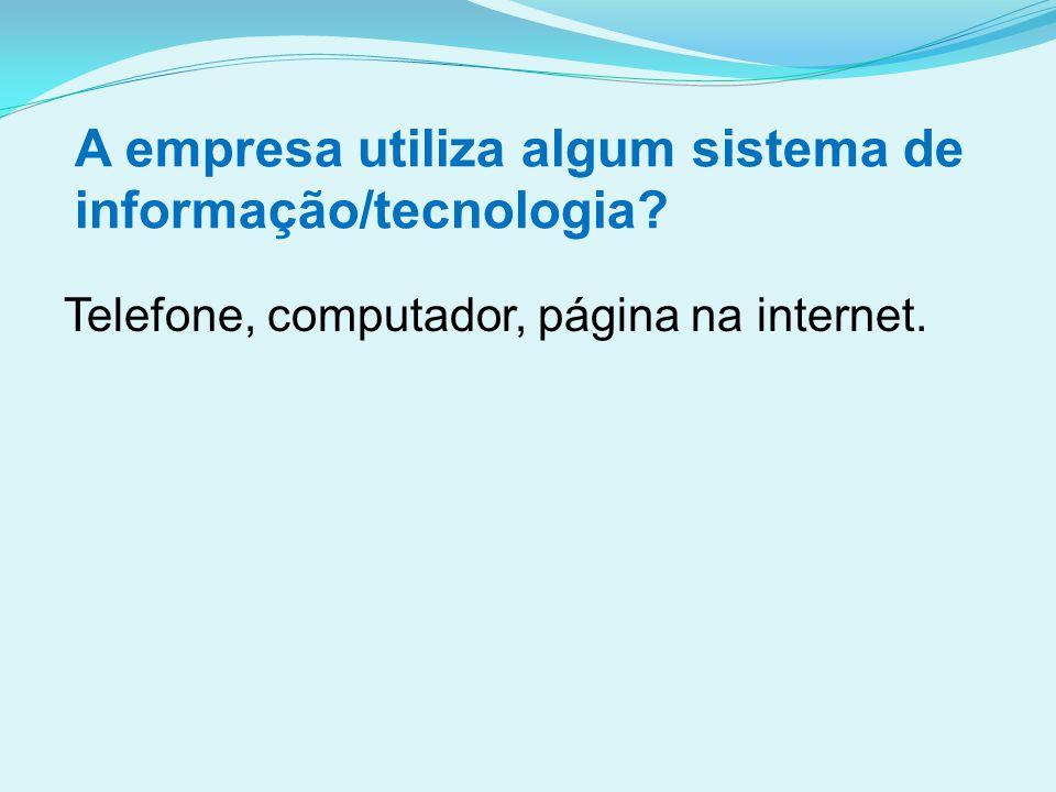 A empresa utiliza algum sistema de informação/tecnologia