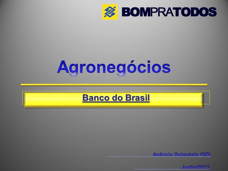Agência Goianésia (GO)