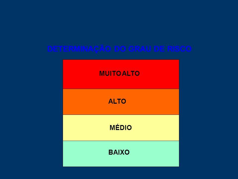 DETERMINAÇÃO DO GRAU DE RISCO