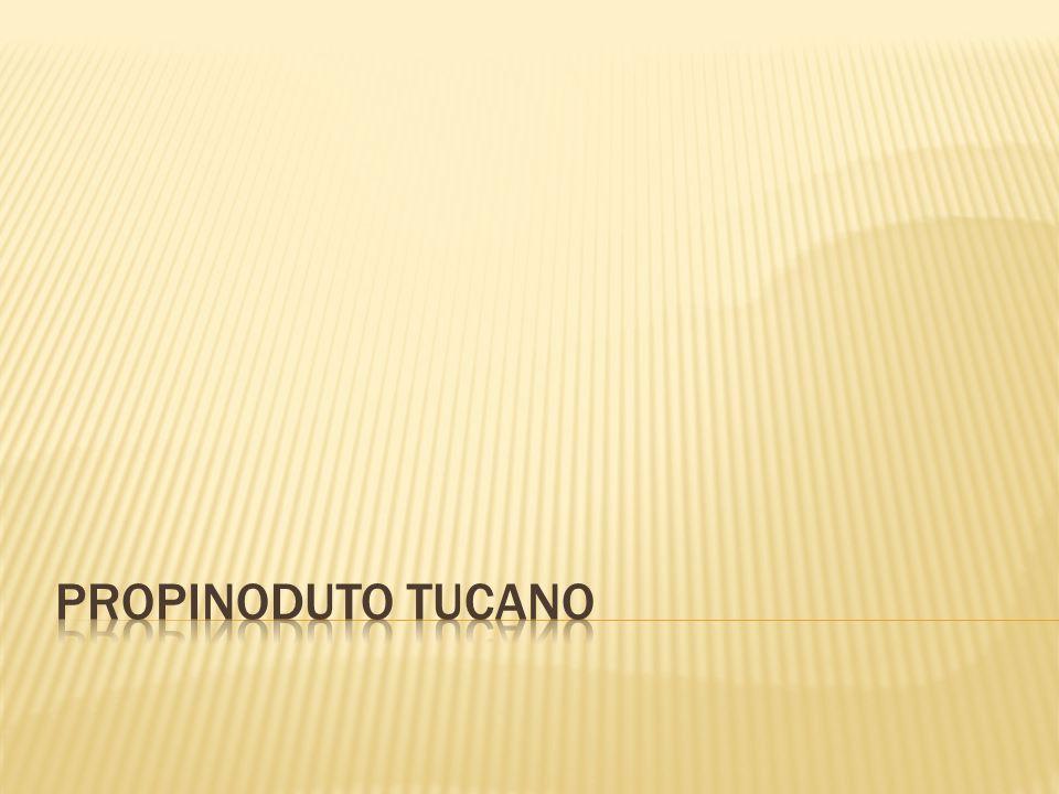 Propinoduto tucano