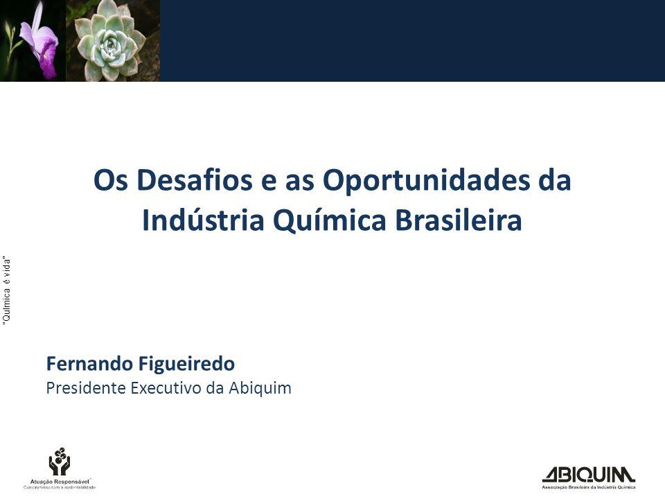 Os Desafios e as Oportunidades da Indústria Química Brasileira