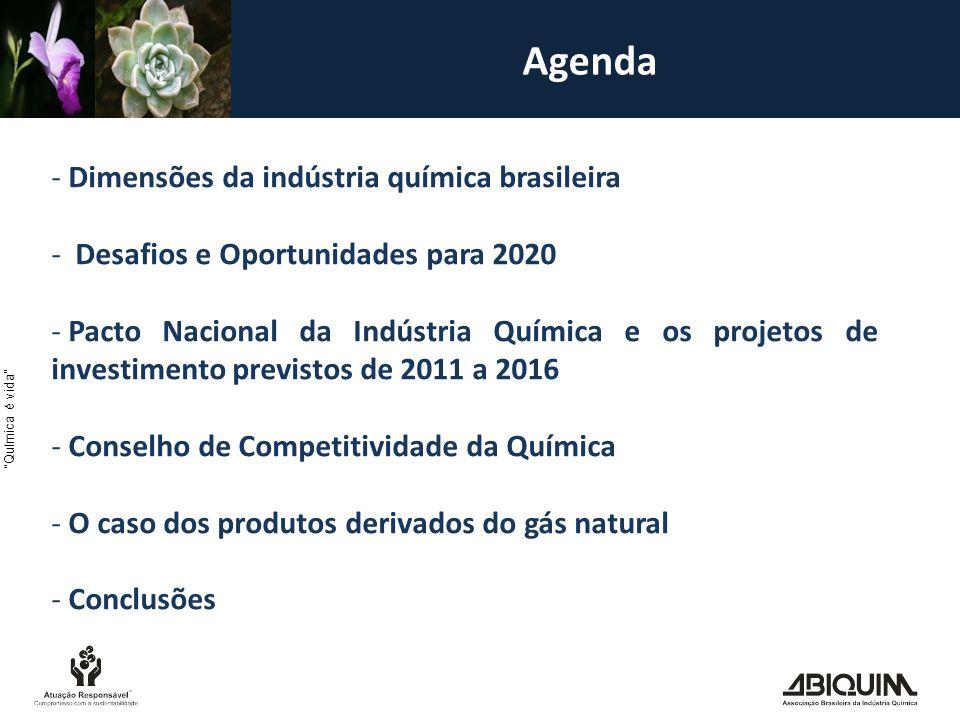Agenda Dimensões da indústria química brasileira