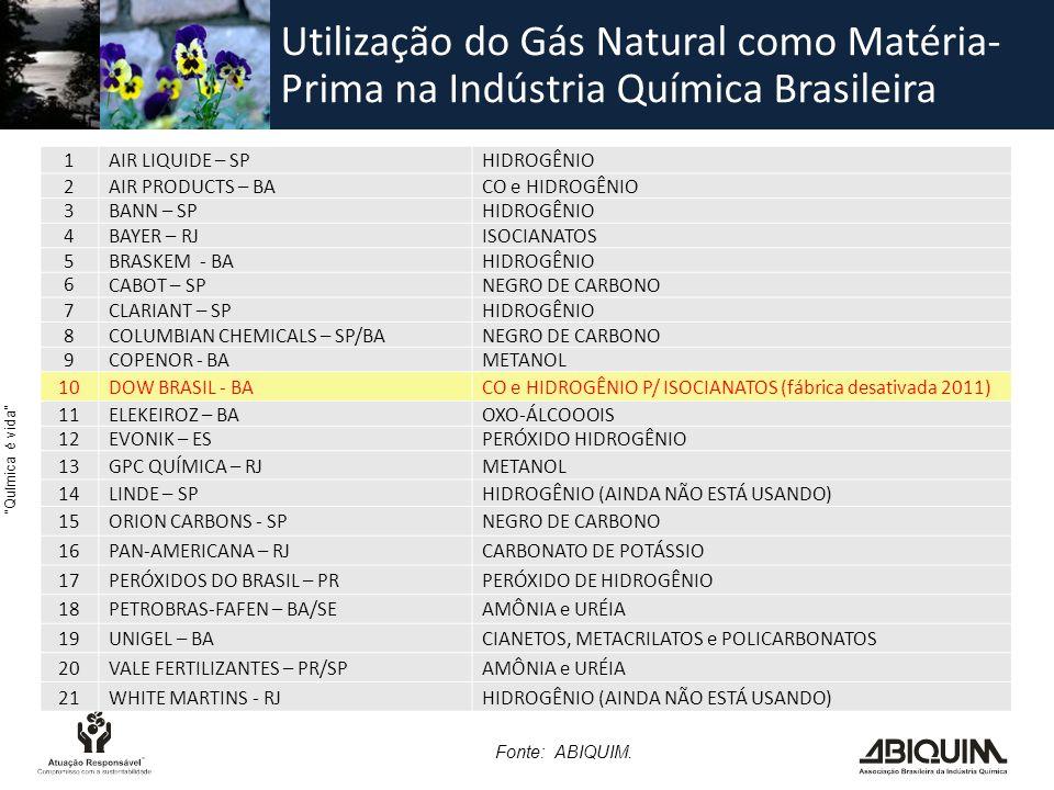 Utilização do Gás Natural como Matéria-Prima na Indústria Química Brasileira