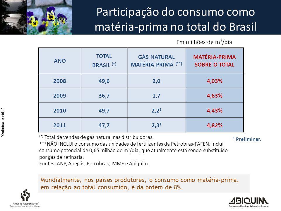 Participação do consumo como matéria-prima no total do Brasil