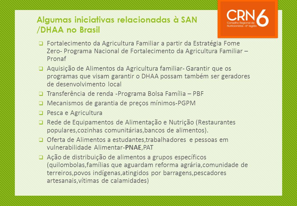 Algumas iniciativas relacionadas à SAN /DHAA no Brasil