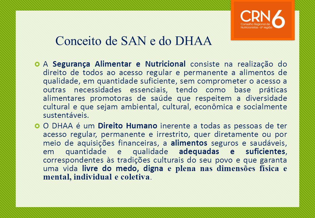 Conceito de SAN e do DHAA