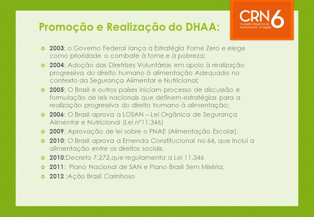 Promoção e Realização do DHAA: