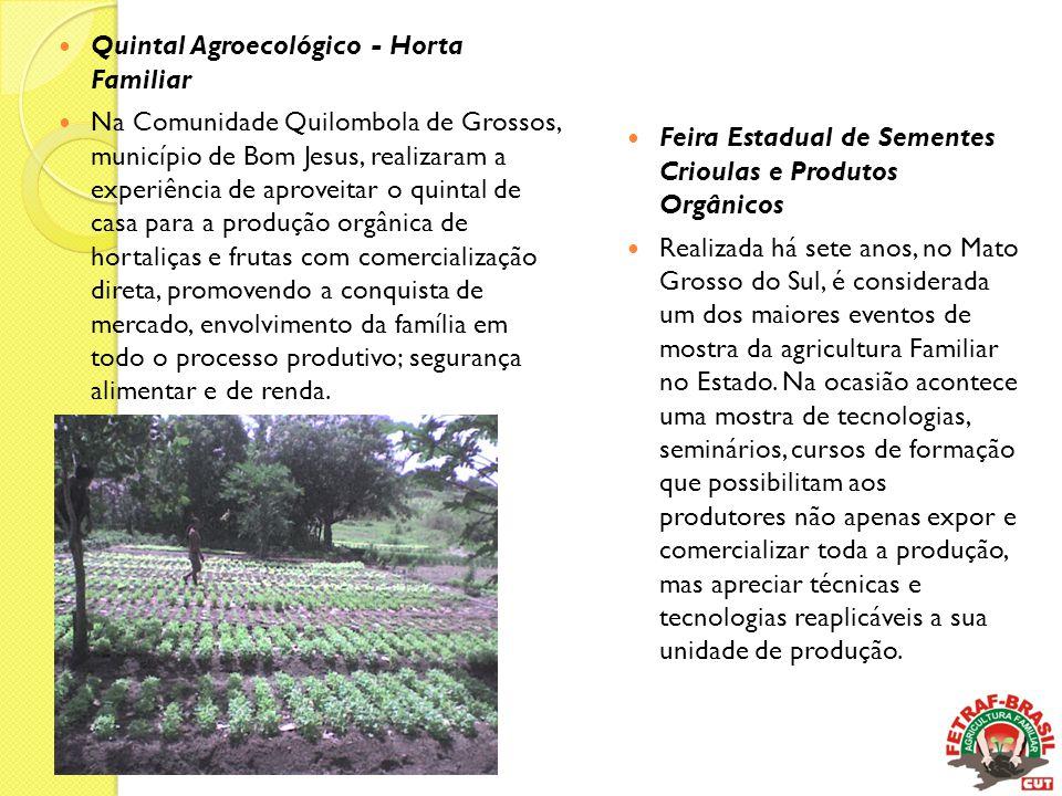 Quintal Agroecológico - Horta Familiar