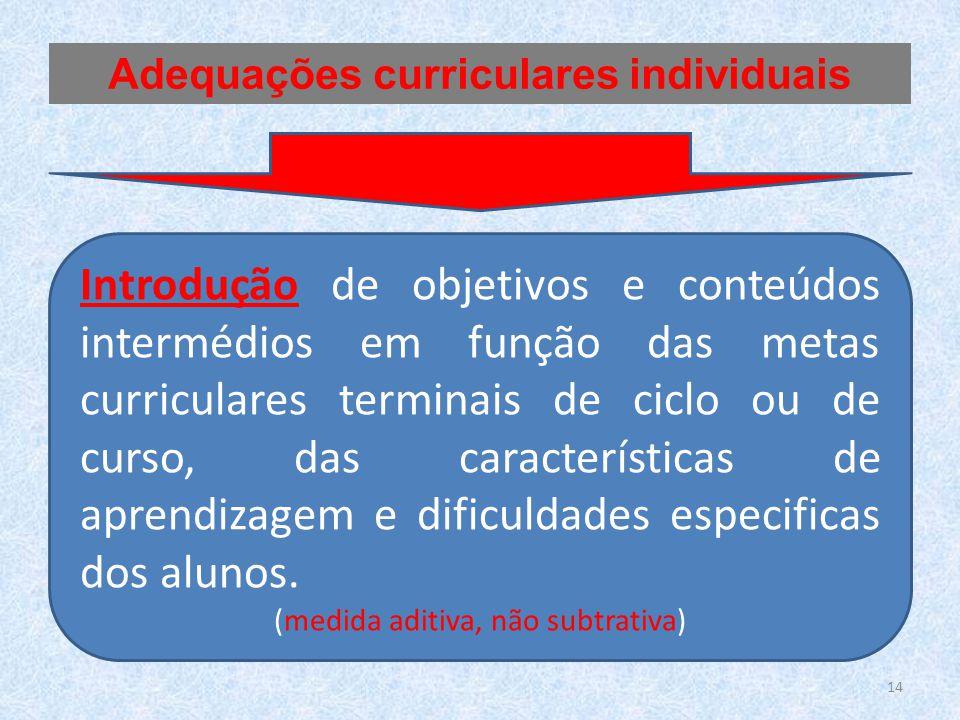 Adequações curriculares individuais
