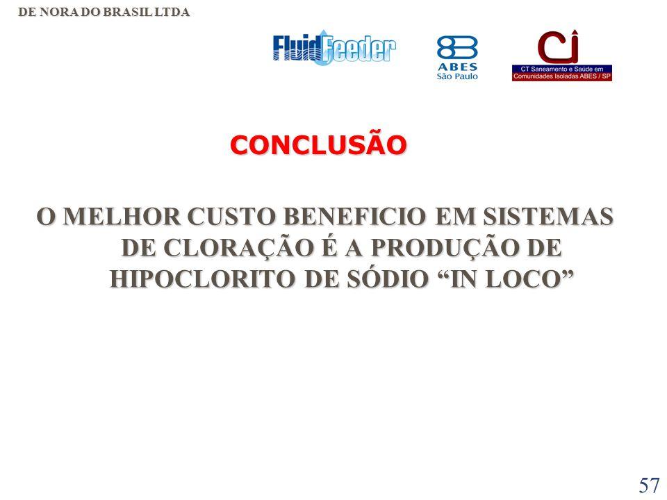 DE NORA DO BRASIL LTDA CONCLUSÃO.